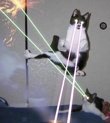 Christmas-Laser-Beam-Cats-by-klusmanp-Holiday-Cats-of-Laser-Beam-Doom.jpg
