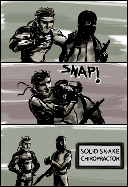 snake and meryl relationship test