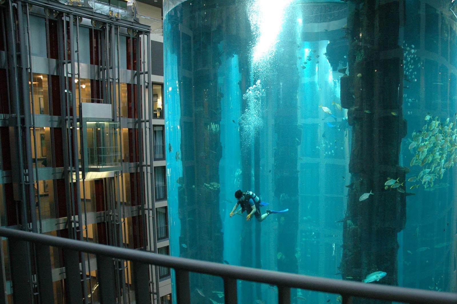 Radisson Blue Hotel Berlin Aquarium